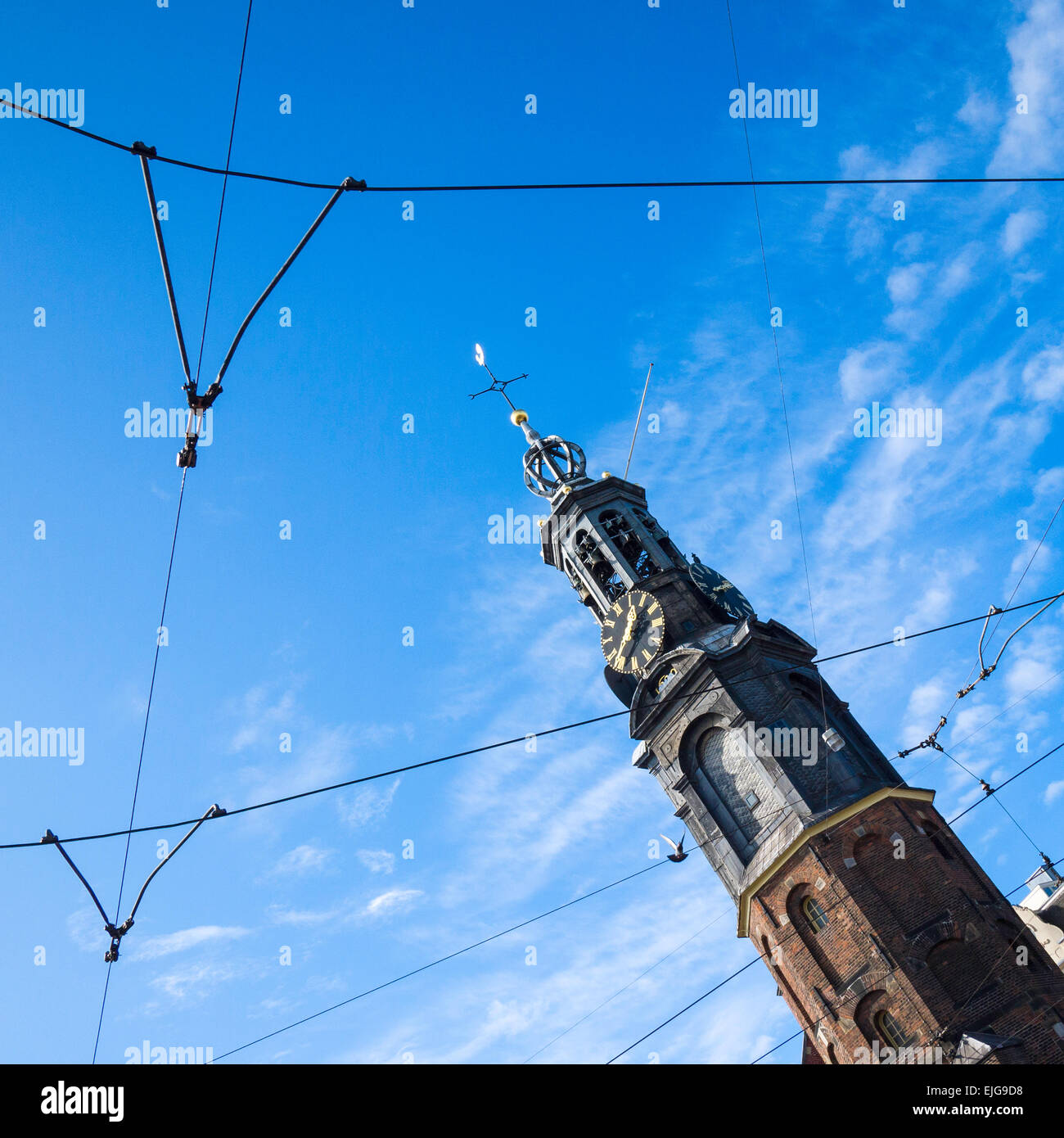 The Munttoren, or 'Coin Tower', a tower in Amsterdam., Holland, on Muntplein Square, near the flower market - Stock Image