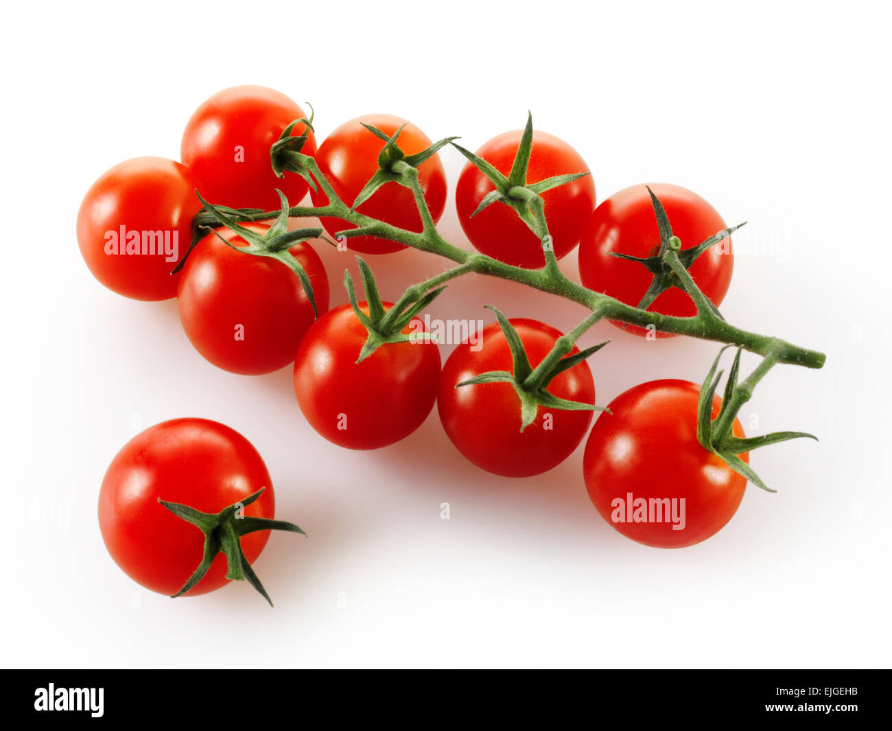 Vittoris vine tomatoes on white background - Stock Image