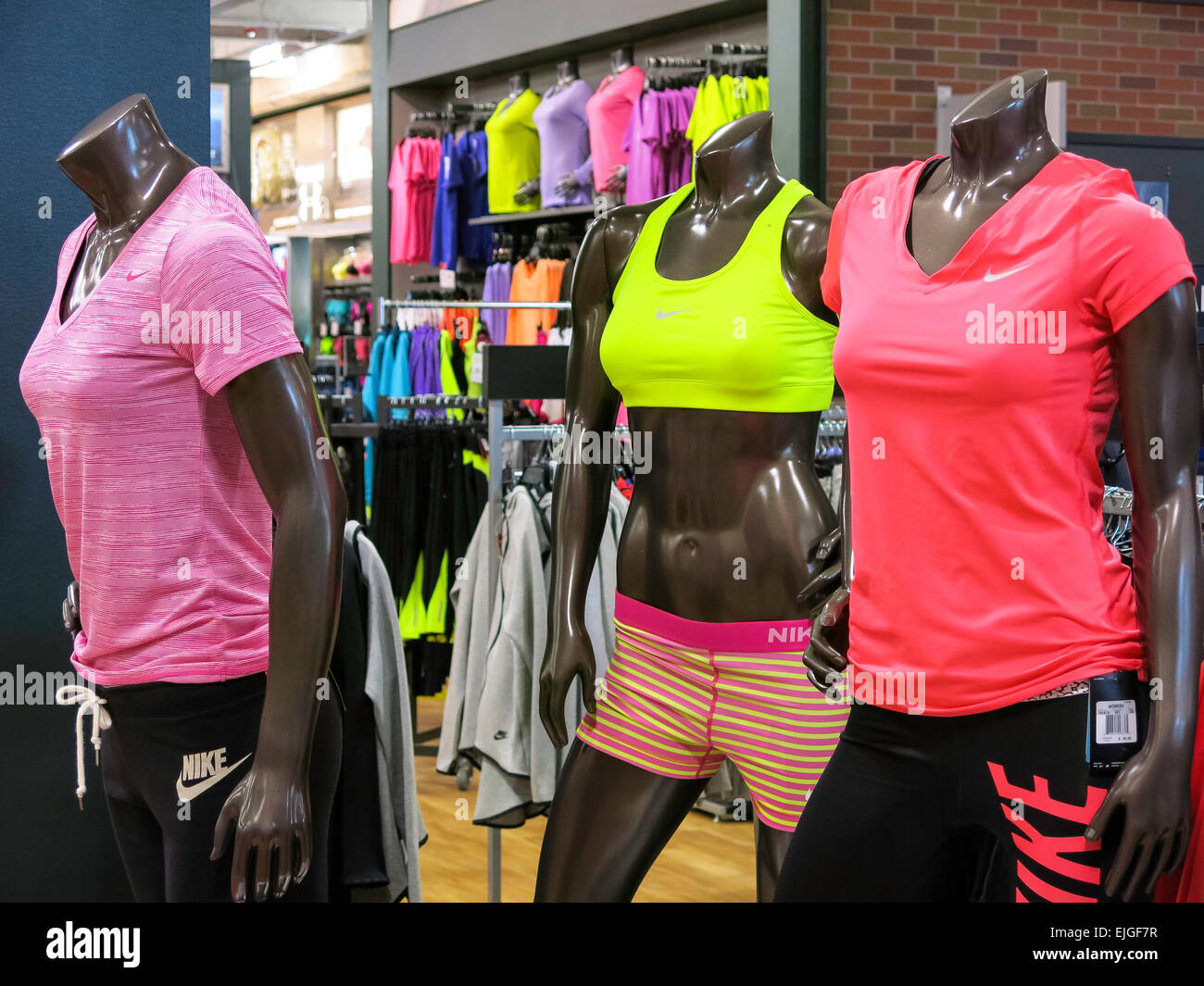 Dick's Sporting Goods in Tampa, Florida, USA - Stock Image