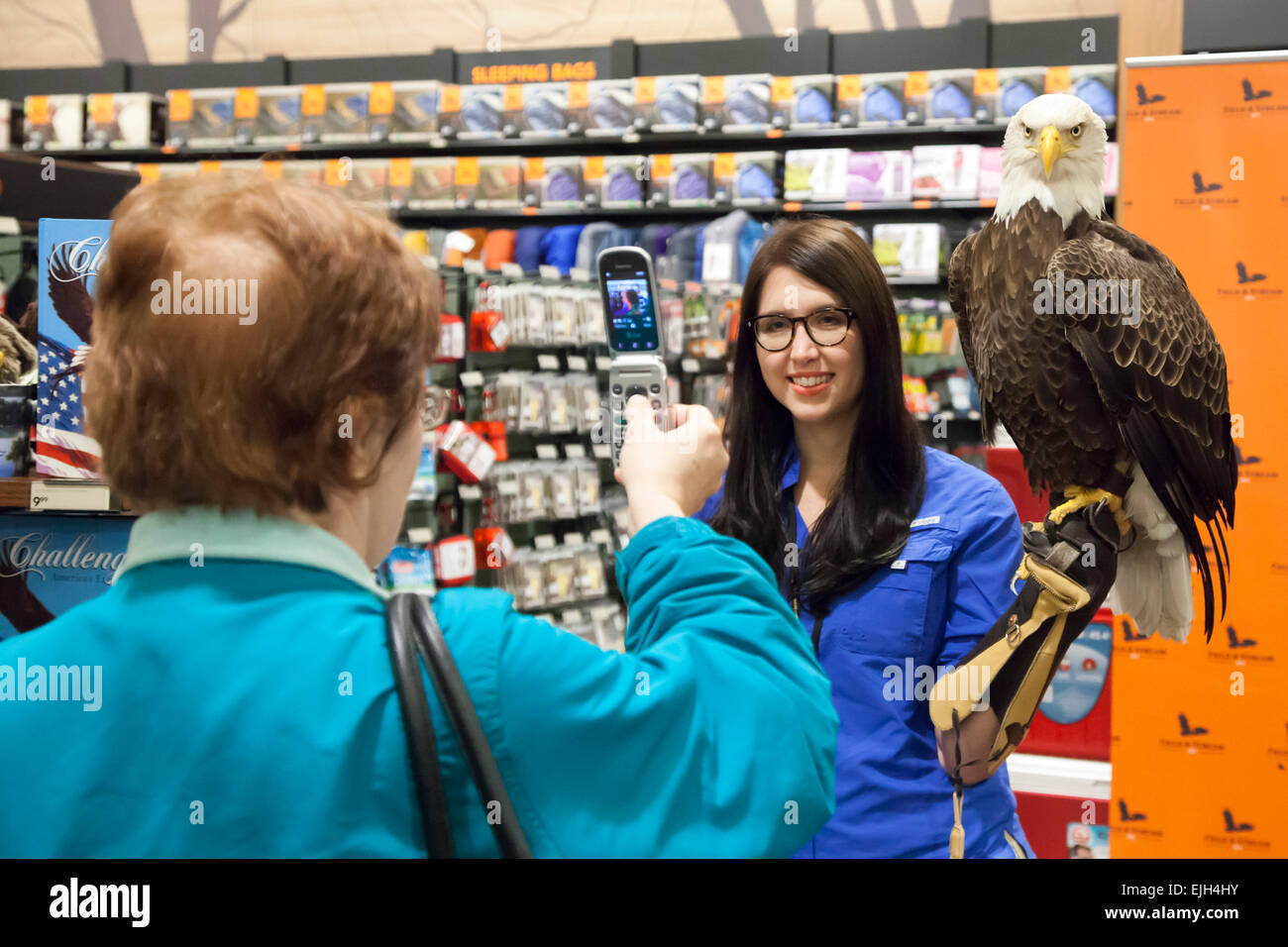 Troy, Michigan - A 25-year-old bald eagle named Challenger and his handler from the American Eagle Foundation. - Stock Image