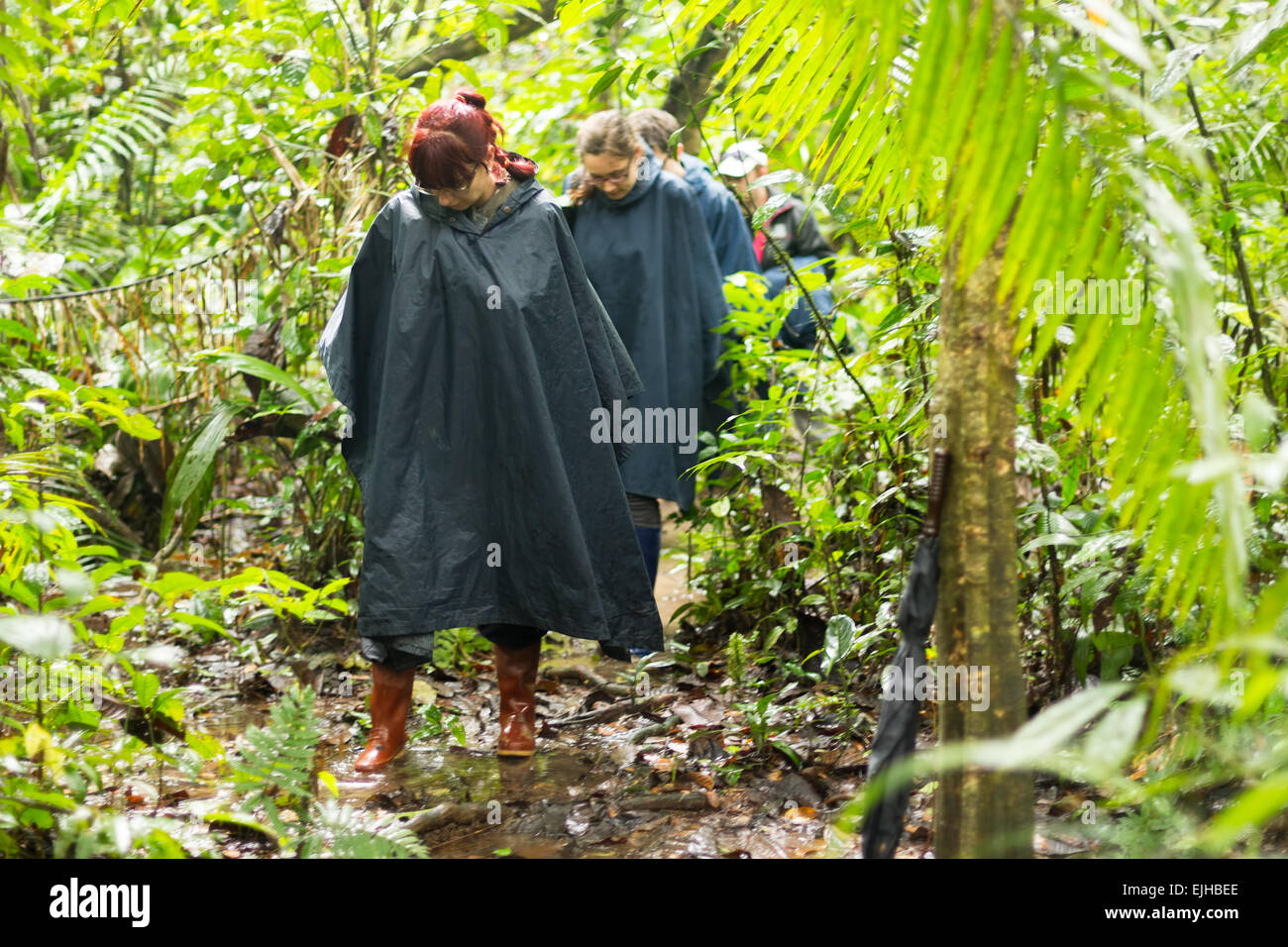 Group Of Tourists In Cuyabeno Wildlife Reserve Ecuador Dressed Up In Rain Ponchos - Stock Image
