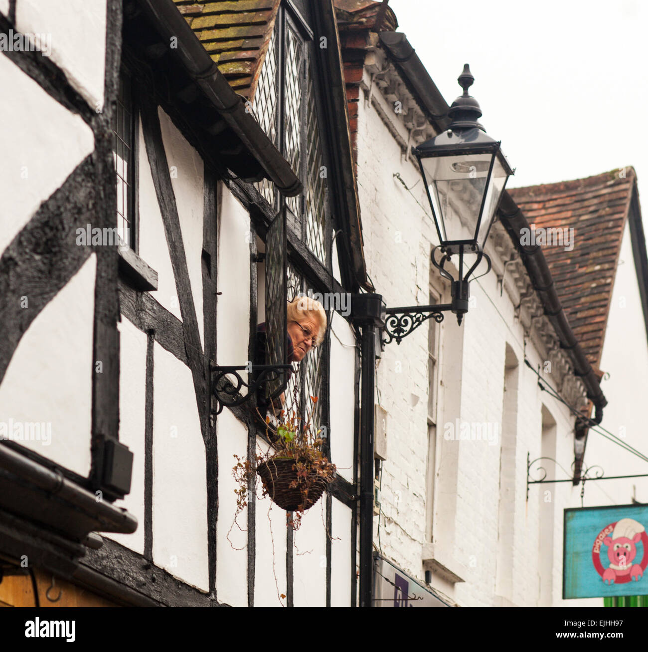 Woman watching from window of Tudor house in Godalming, Surrey, England - Stock Image