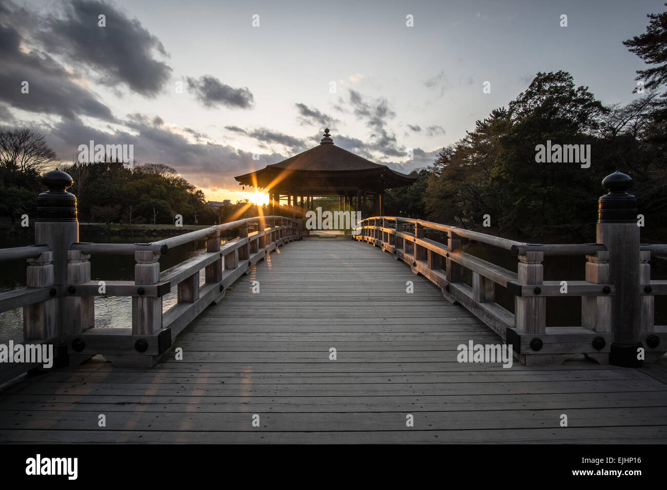 Spring sunset at Sagi Ike Pond in Nara, Japan - Stock Image
