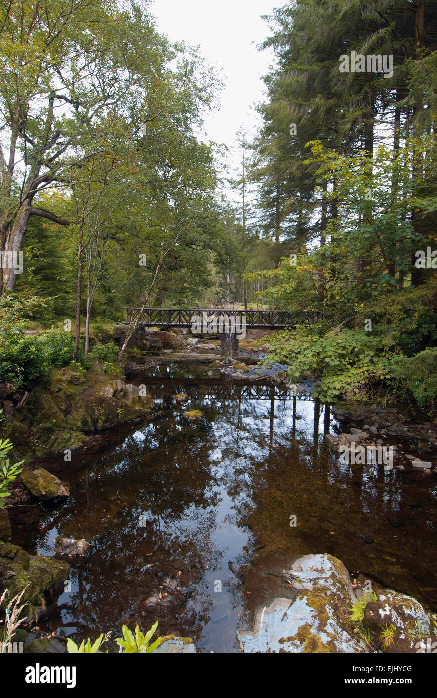One of 16 bridges across the Shimna River in Tollymore Forest Park, Northern Ireland Stock Photo