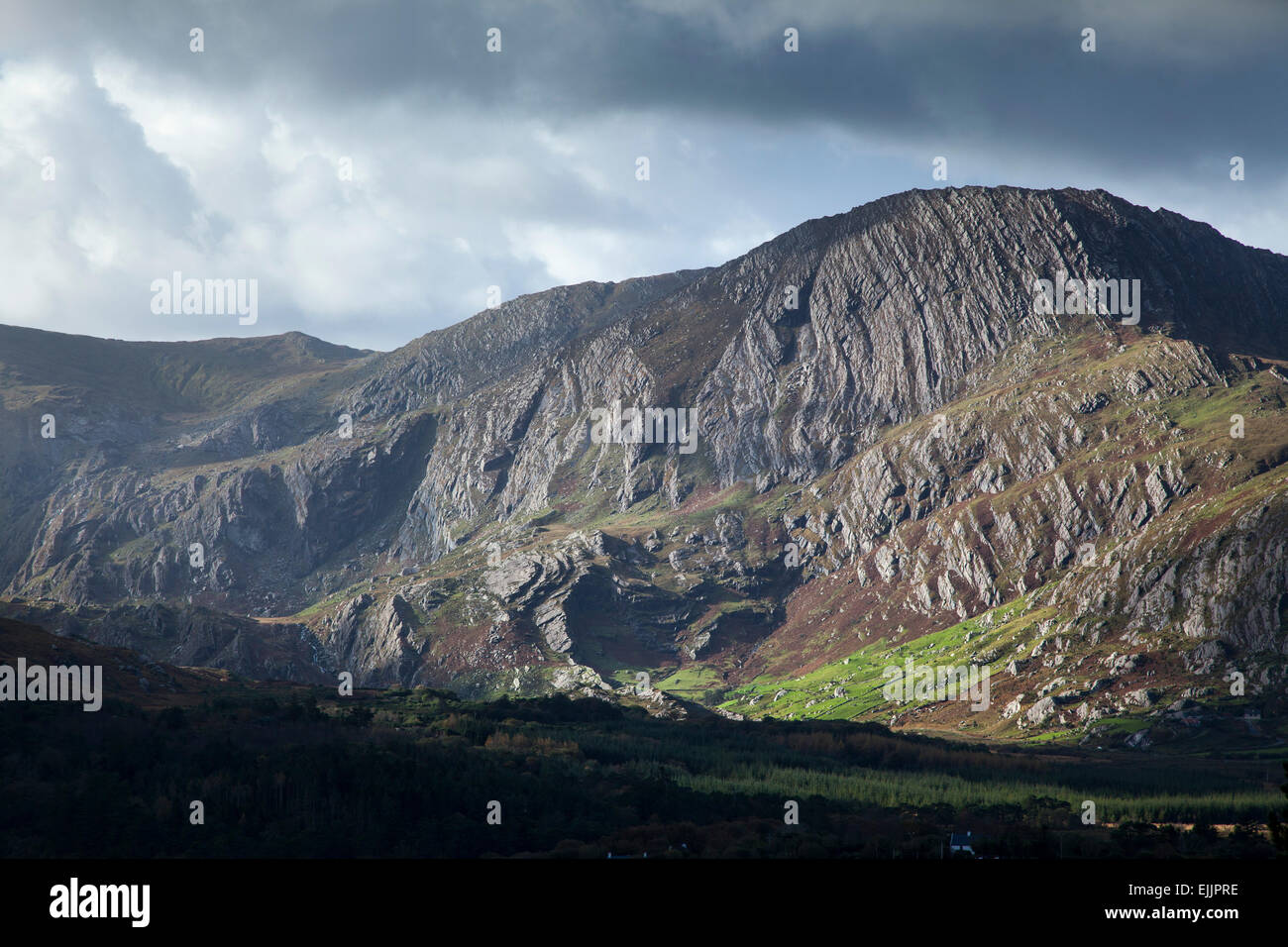 Exposed sandstone rock on Coomacloghane mountain, Glanmore Valley, Beara Peninsula, County Kerry, Ireland. - Stock Image