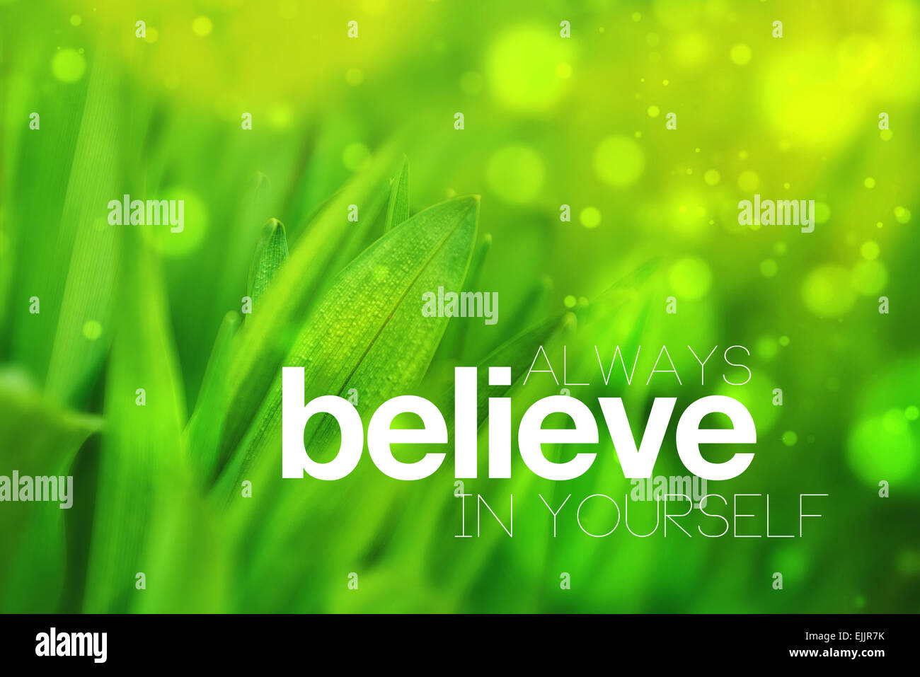 Always Believe in Yourself Motivational Conceptual Image, Quotation on Blurred Spring Green background, Vintage - Stock Image