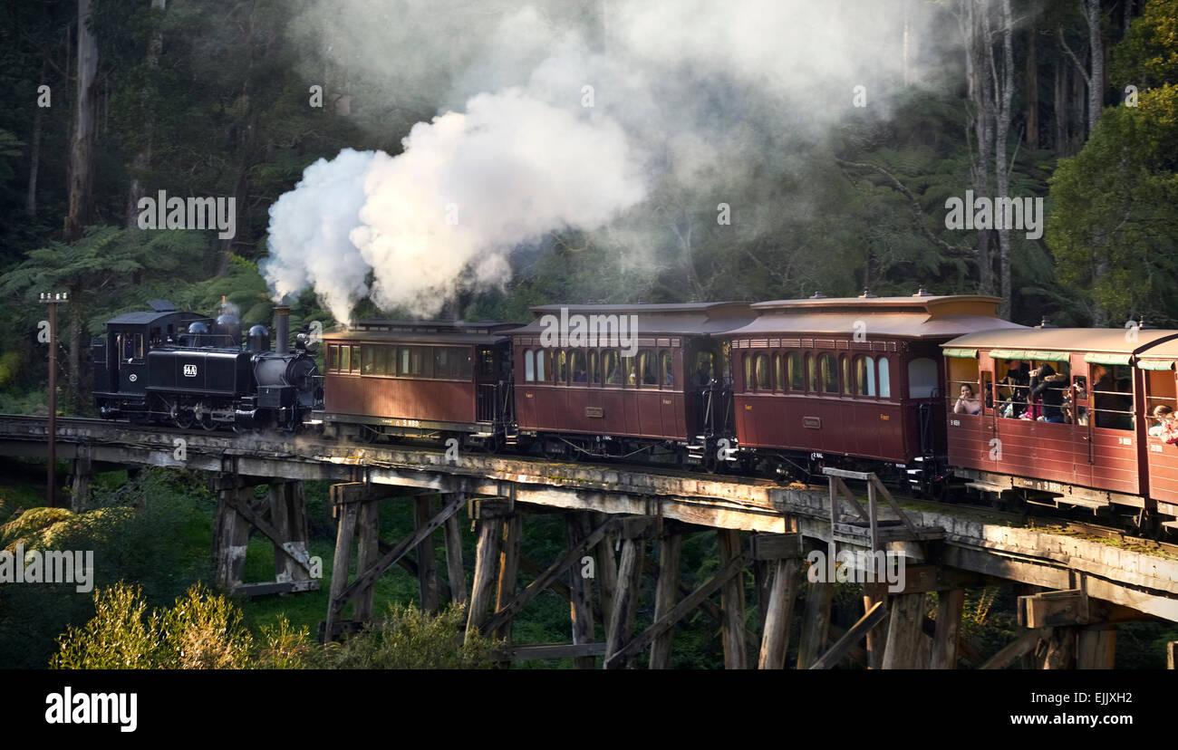 Puffing Billy passing through Monbulk Creek Trestle Bridge - Stock Image