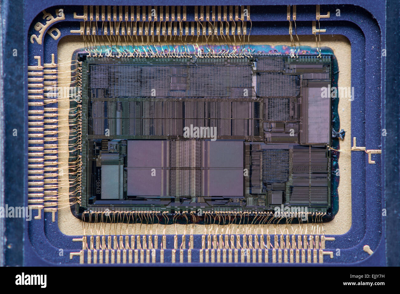 Close-up of an opened Intel 80486DX (i486) microprocessor, one of the most popular CPUs for personal computers in - Stock Image