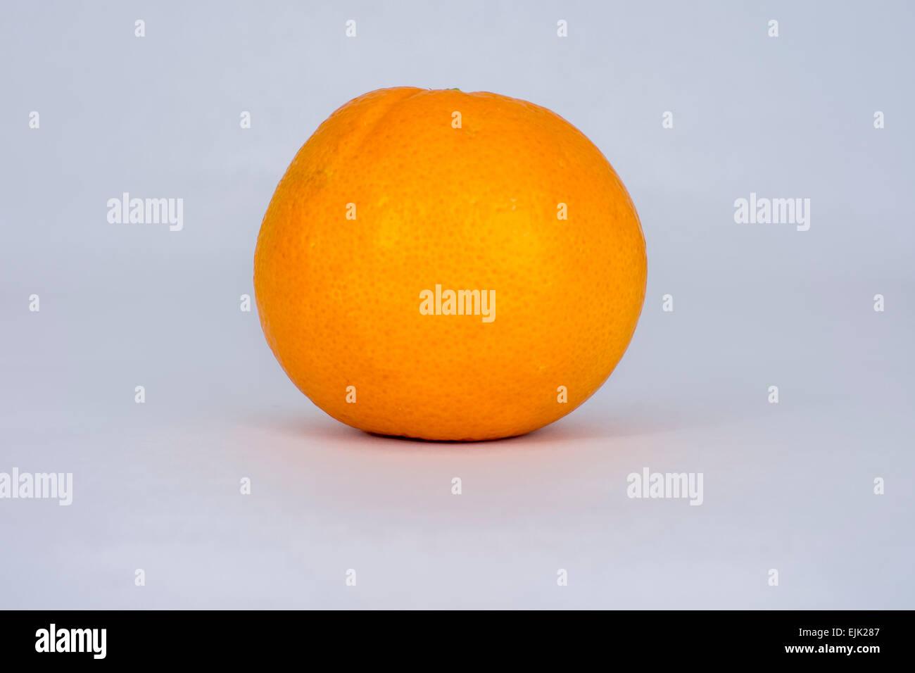 single orange on a white background - Stock Image