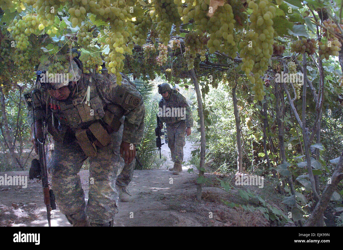 US Army Soldiers From Bravo Company 1st Battalion 505th Parachute Infantry Regiment 82nd Airborne Division Search A Vineyard In The Diyala River Valley