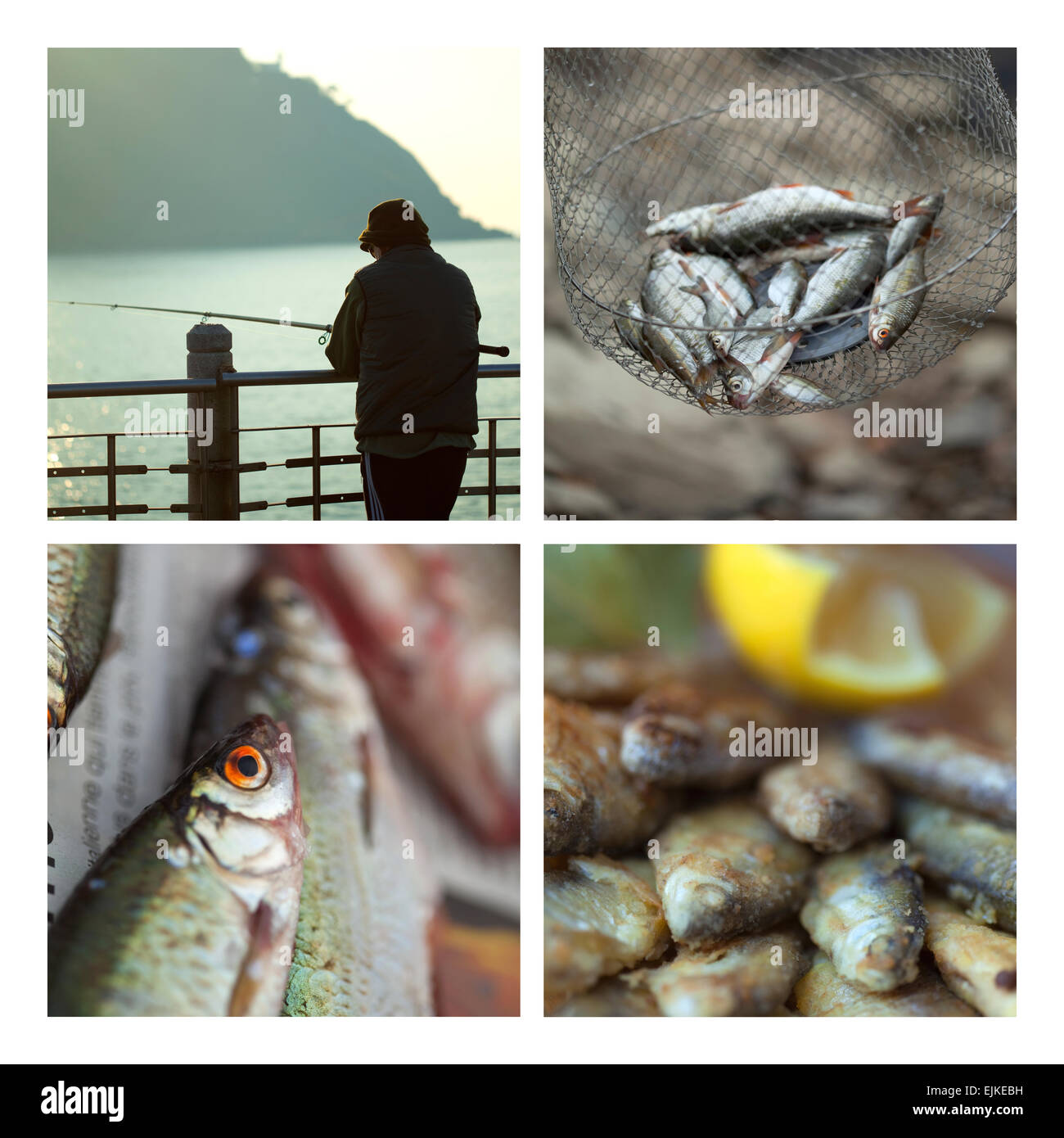 Fishes and fisher man on a collage - Stock Image