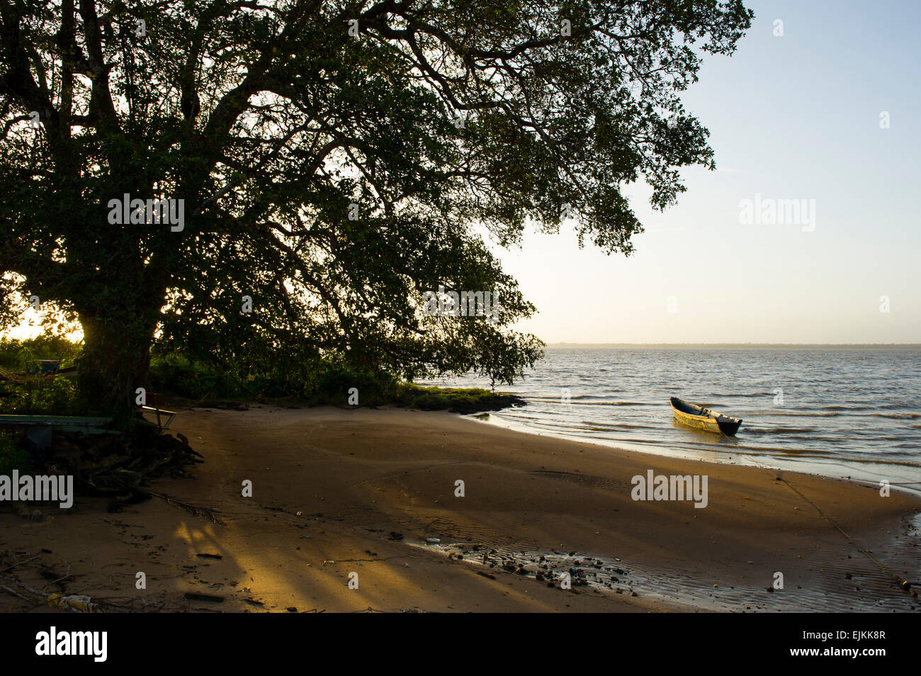 Beach, Galibi, Suriname - Stock Image