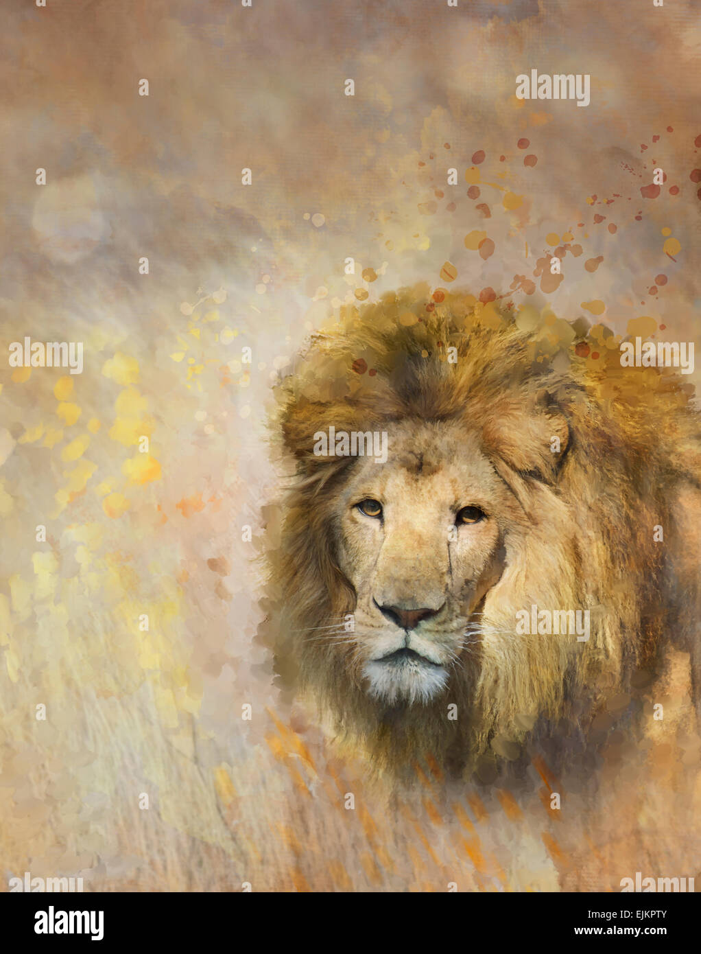 Digital Painting Of African Lion - Stock Image