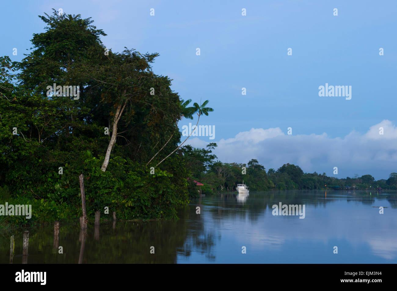 The Saramacca River at dawn, Suriname - Stock Image