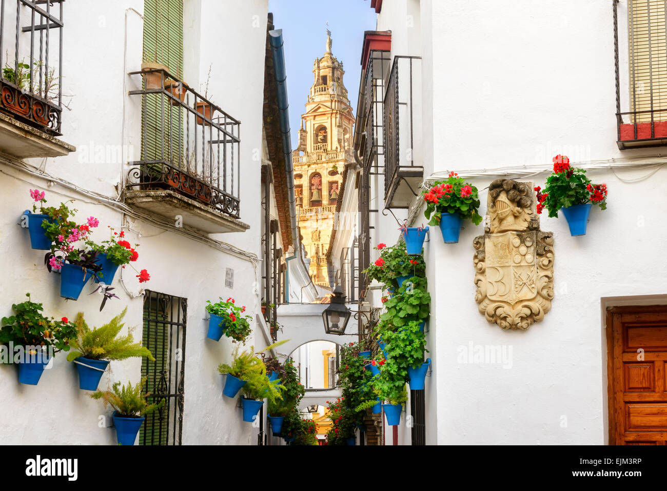 Floral display / hanging baskets in flower street, la calla de las Flores, Bell Tower of the Mezquia, Mosque of Stock Photo