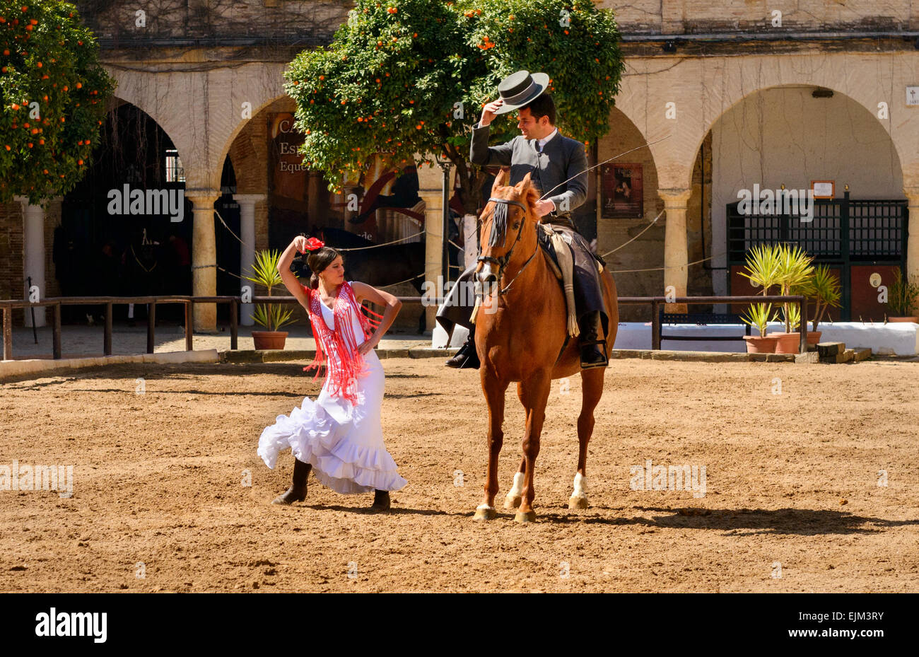 The equestrian show in the Royal stables of Cordoba Stock Photo