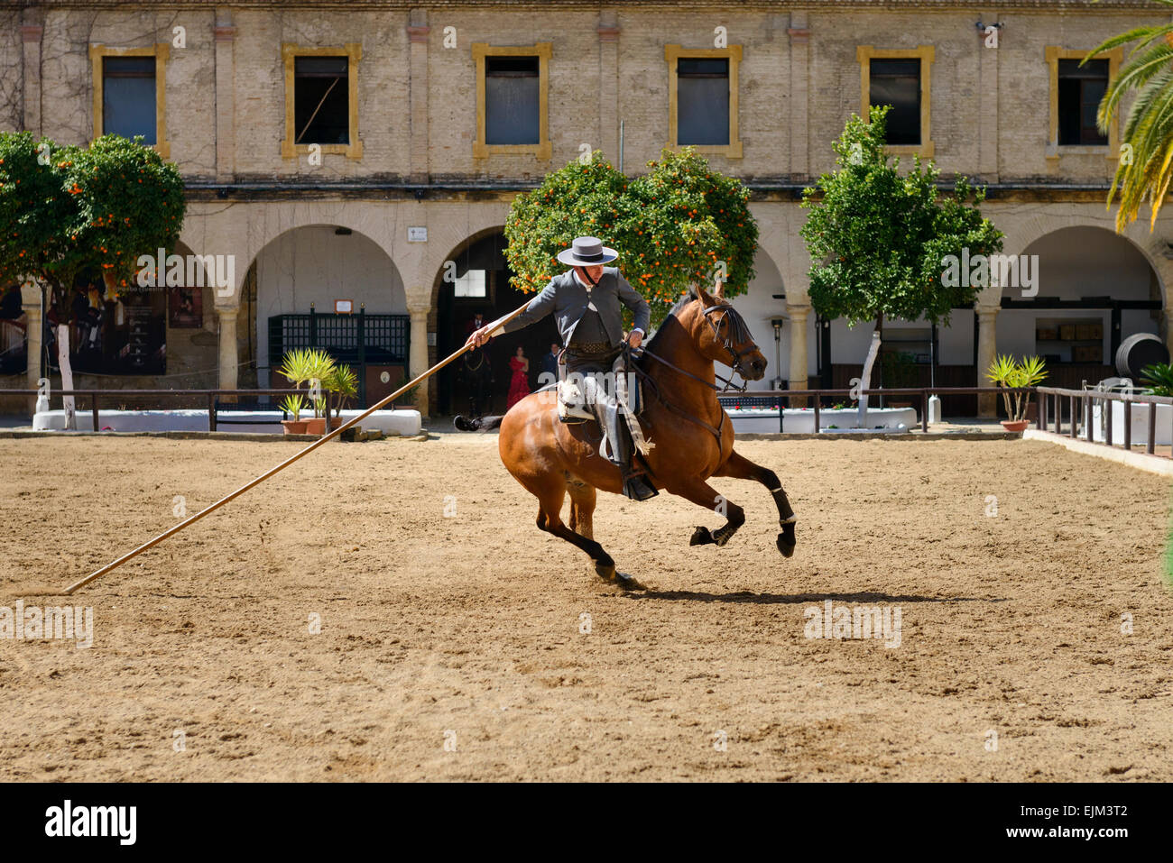 The equestrian show in the Royal stables of Cordoba - Stock Image