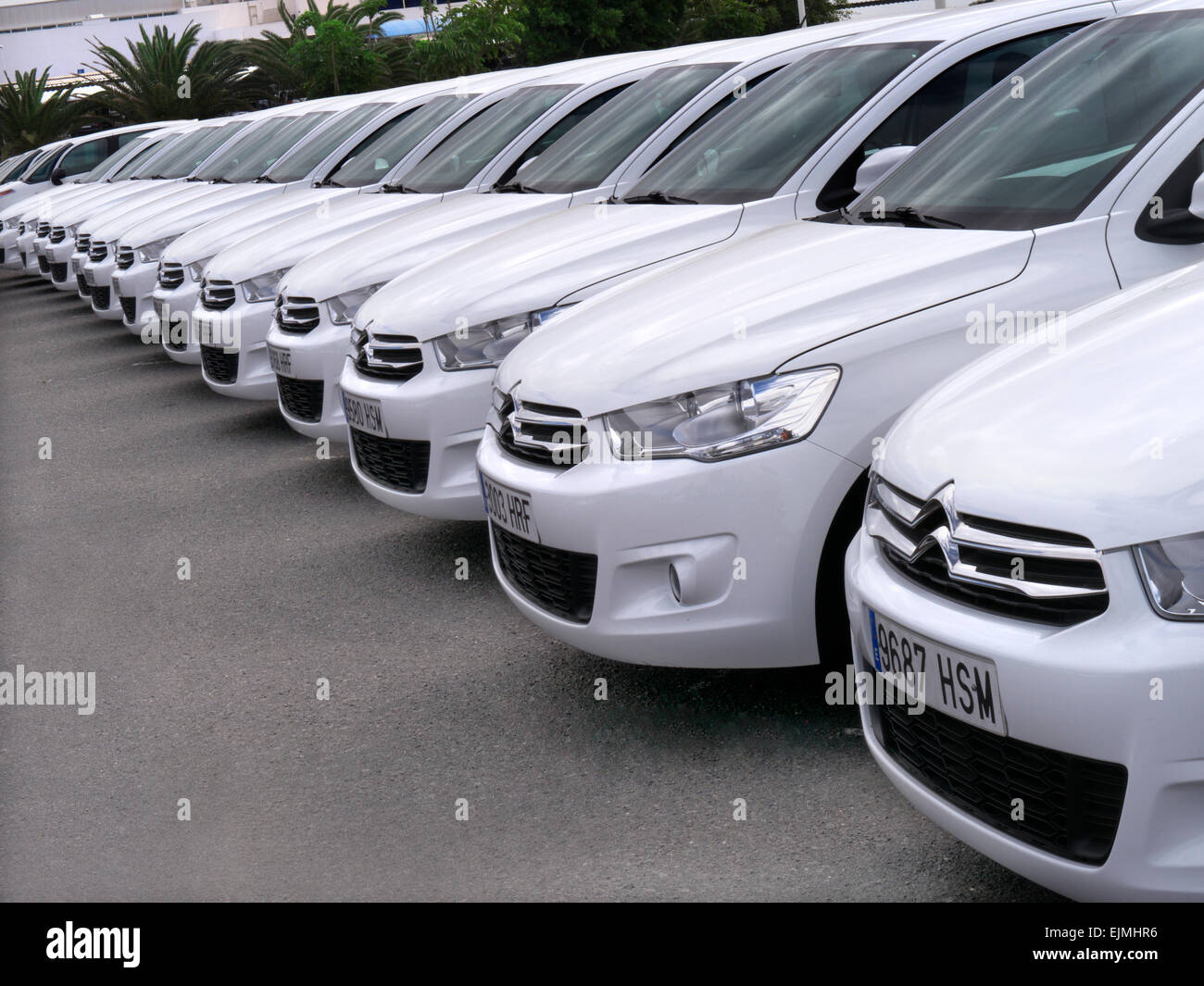 Line Of Identical White Citroen Picasso Rental Cars In Airport Car Park    Stock Image
