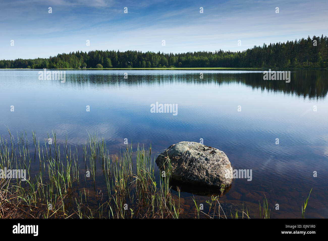 Finnish lake with trees in the background and a big rock in the foreground - Stock Image