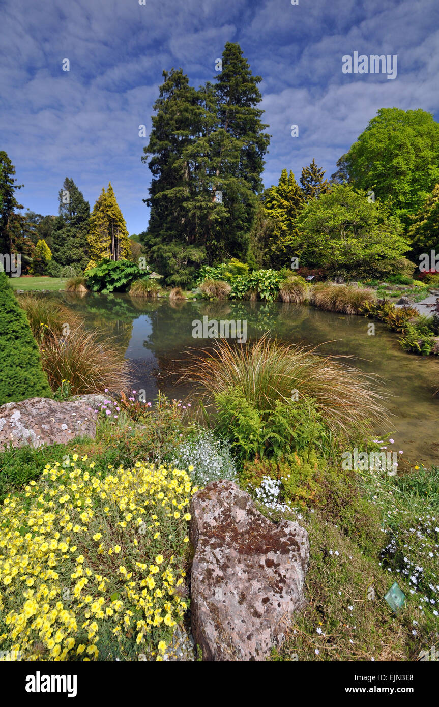 Built in the English style in 1868, the Botanical Gardens, in Wellington New Zealand, is the home of this beautiful - Stock Image