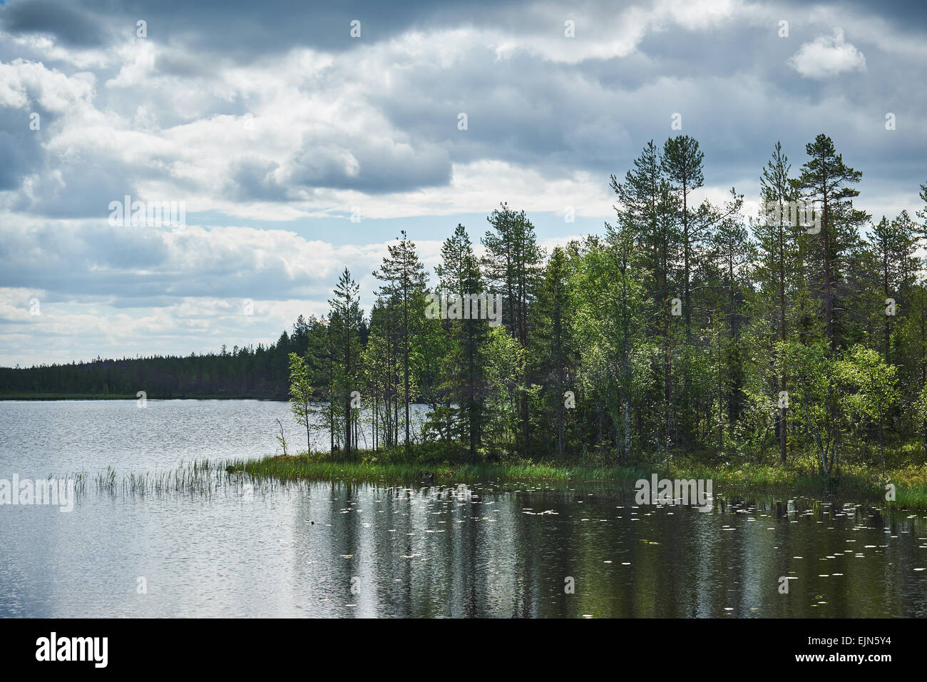 Finnish lake in spring, with trees and a cloudy sky - Stock Image