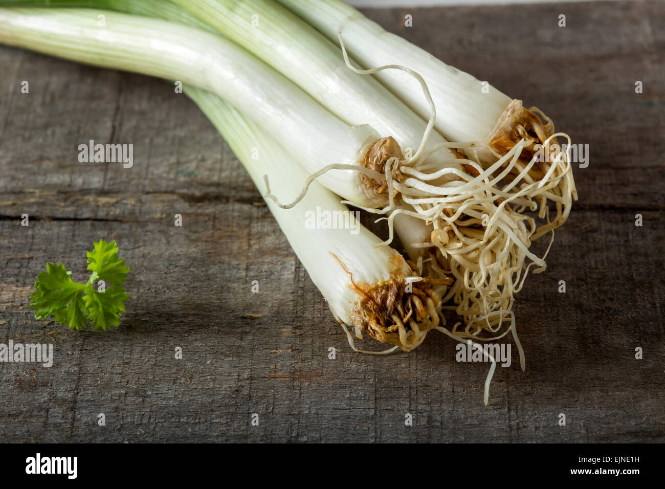 Bundle of fresh green onion on a wooden background Stock Photo