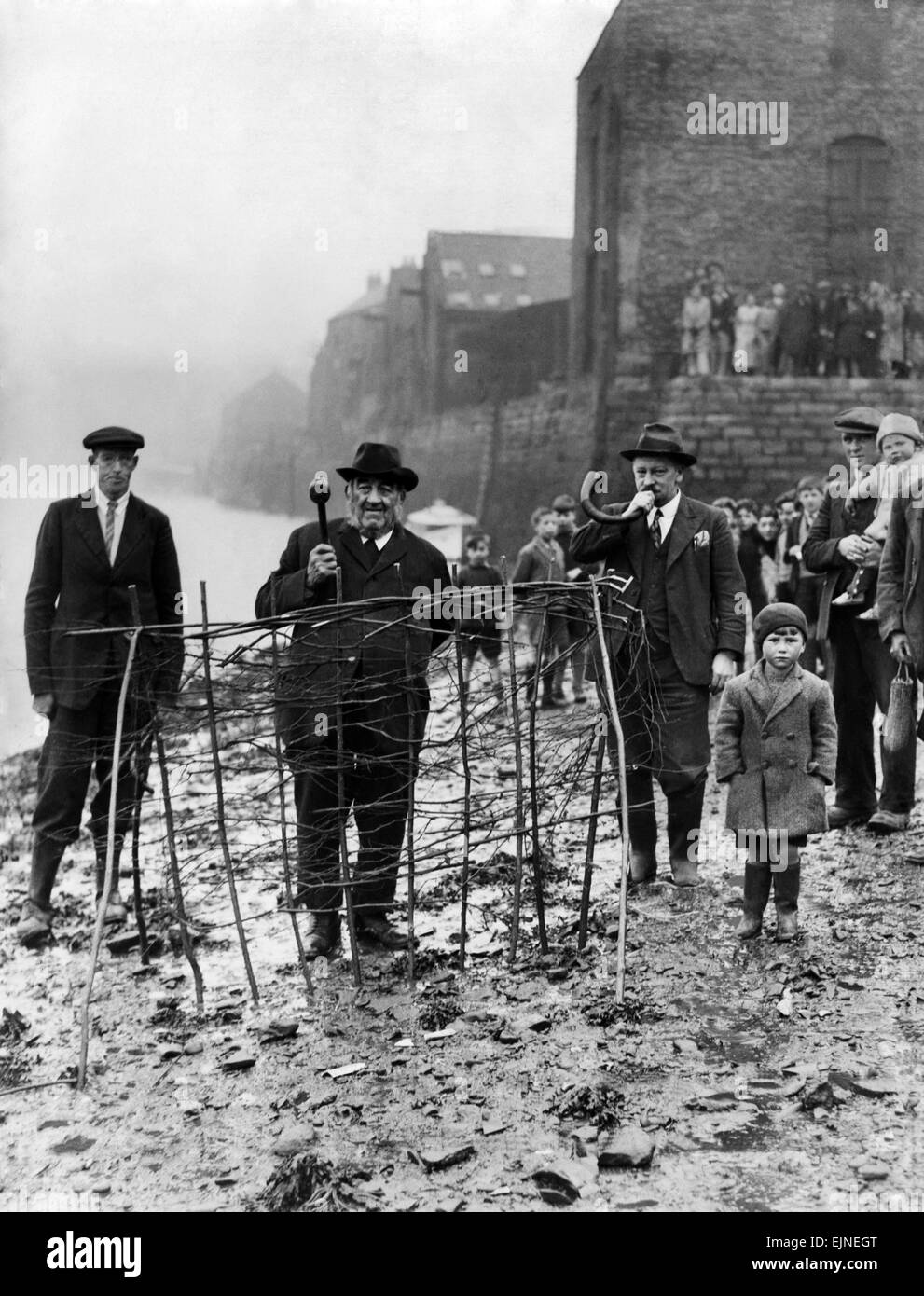 The annual ceremony of planting the Penny Hedge which dates back 800 years seen here being carried out in Whitby, - Stock Image
