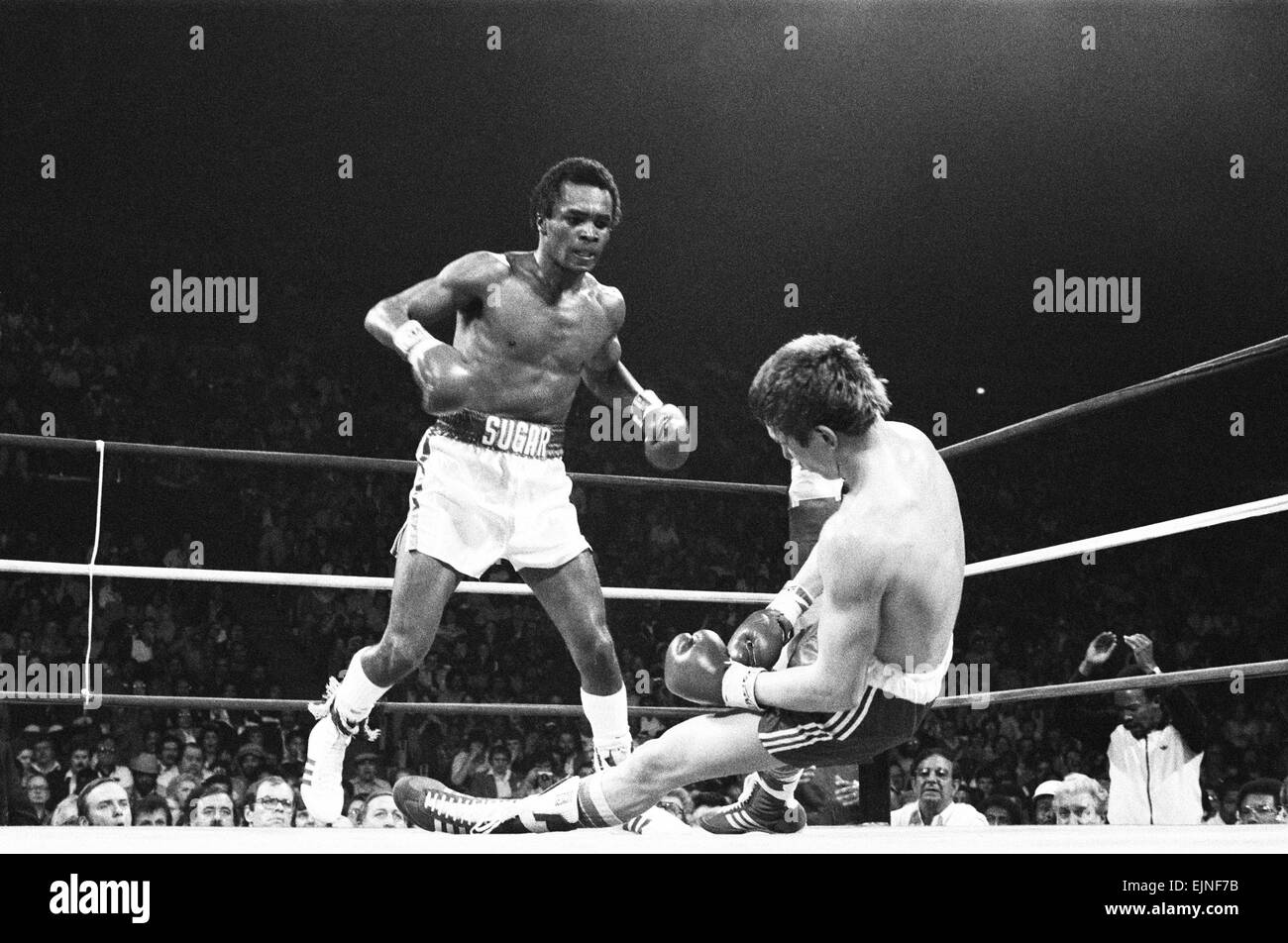 Dave 'Boy' Green v Sugar Ray Leonard - Apr 1980 Dave 'Boy' Green gets KO'd in the 4th Round - Stock Image