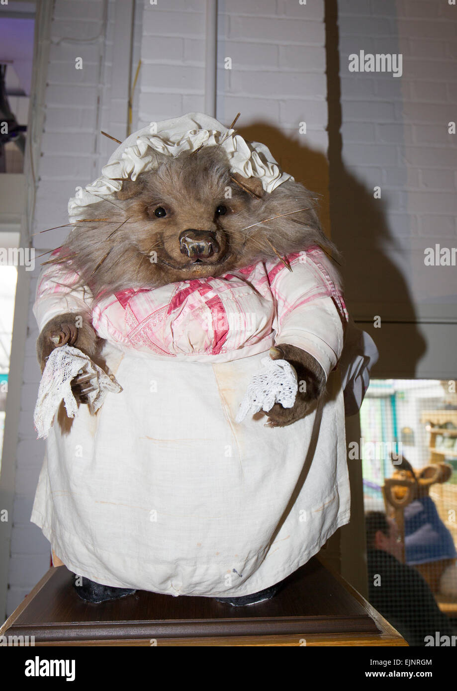 The World of Beatrix Potter attraction Mrs Tiggy-Winkle hedgehog - Stock Image