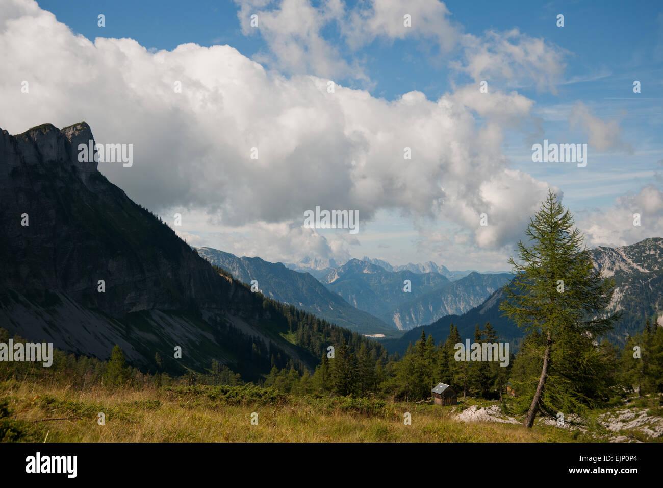 Gschwandtalm, Loser, Altaussee, Salzkammergut, Styria, Austria - Stock Image