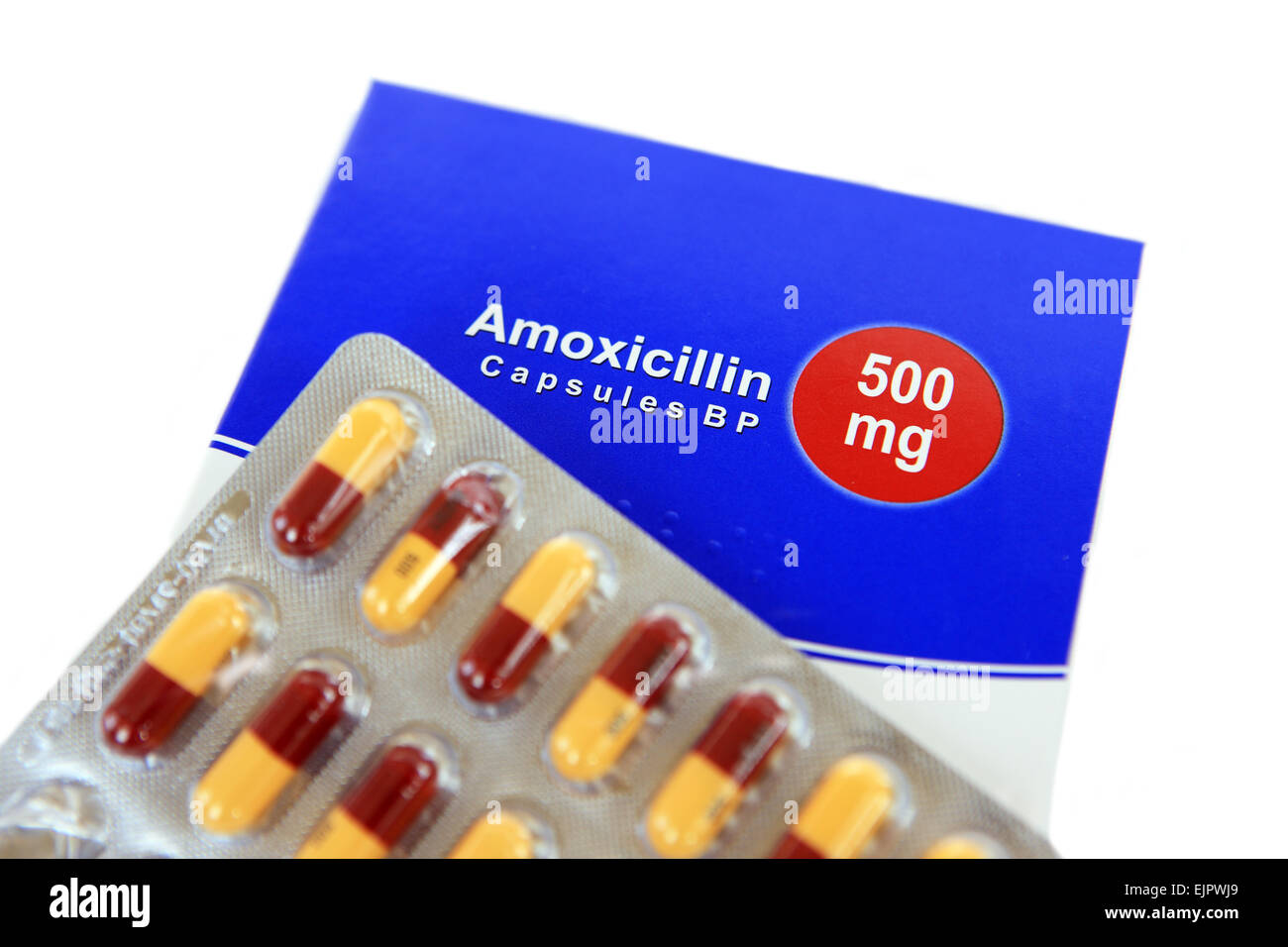 cephalexin 500 mg for sti