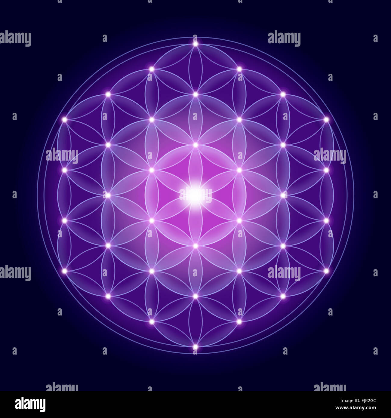 Flower Life Ancient Sacred Pattern Stock Photos Flower Life