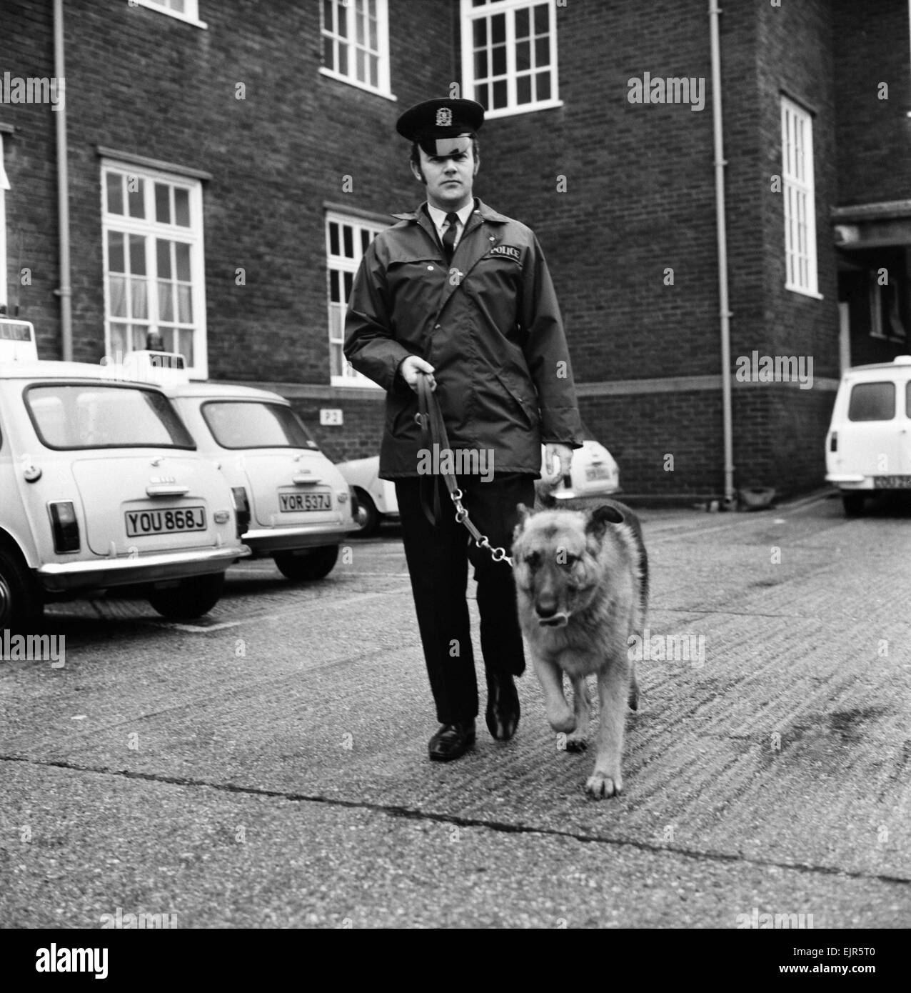 Duke an 8 year old police dog pictured with his handler P.C. Trevor Barnes at Cosham, Hants Police Station. Duke - Stock Image