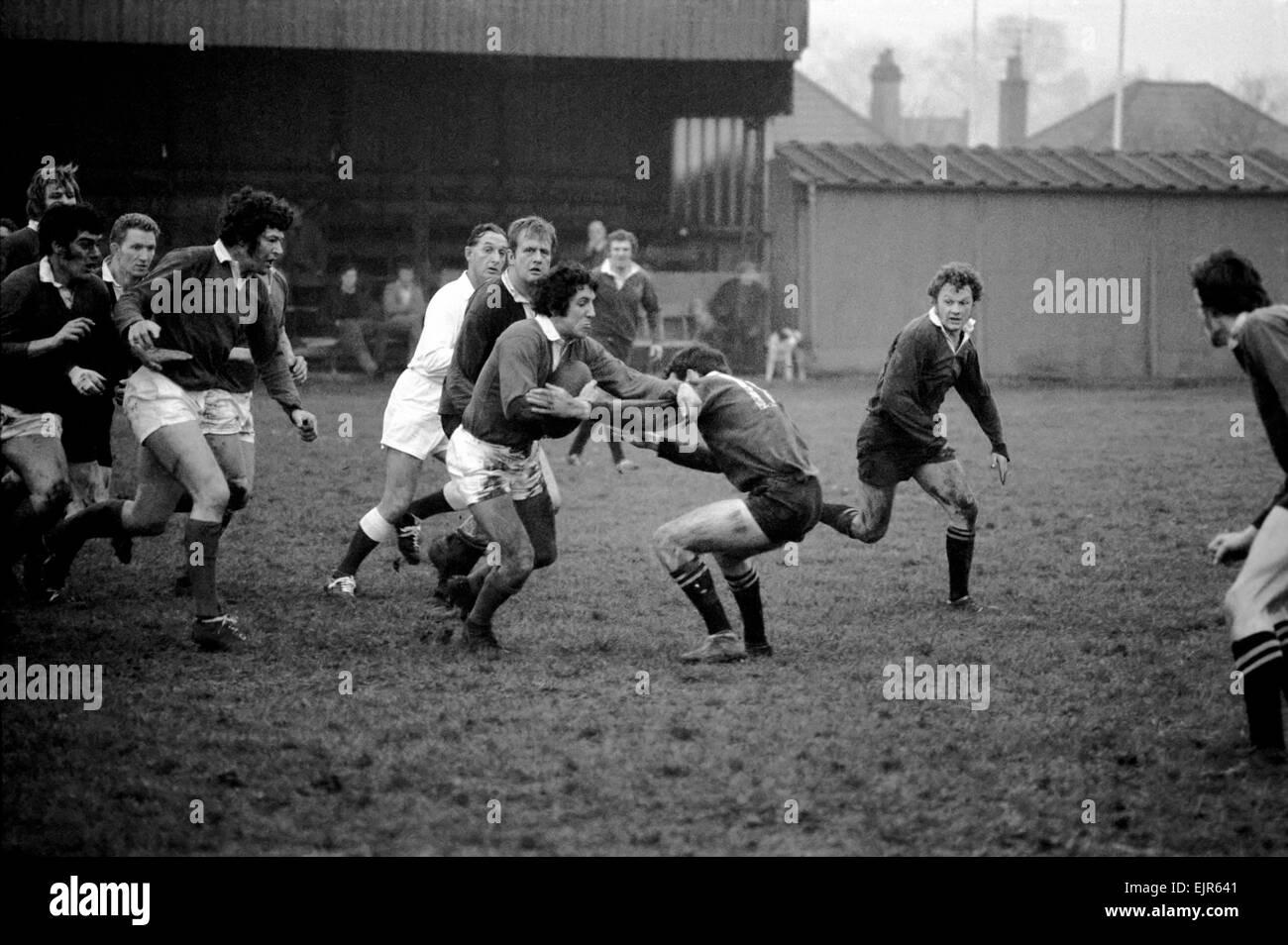 Sport: Rugby Union. Llanelli v. Wasps. Bennett of Llanelli in possession of the ball looks determined to come out - Stock Image