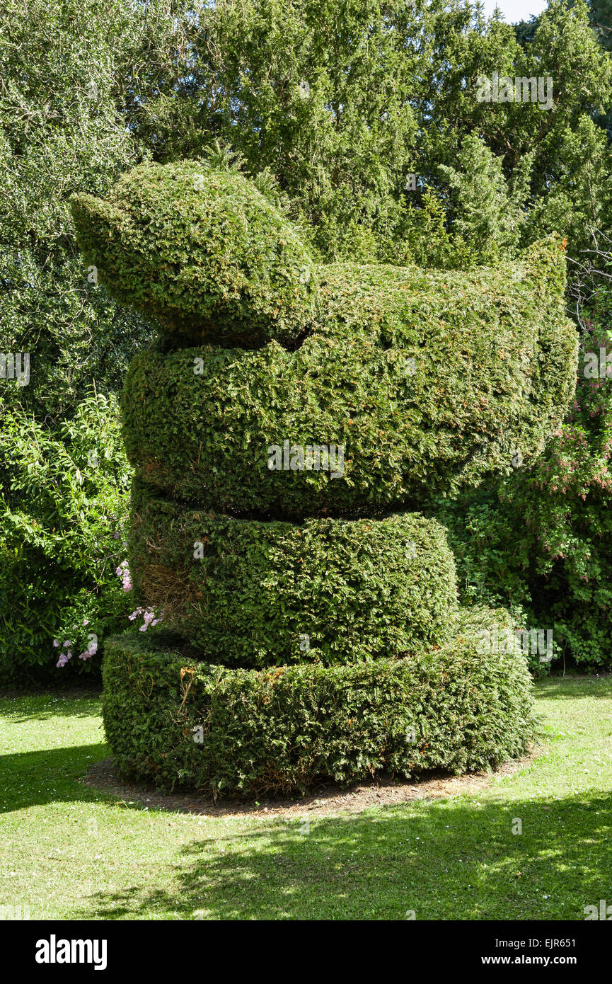 England - a giant topiary duck made from a clipped yew tree - Stock Image