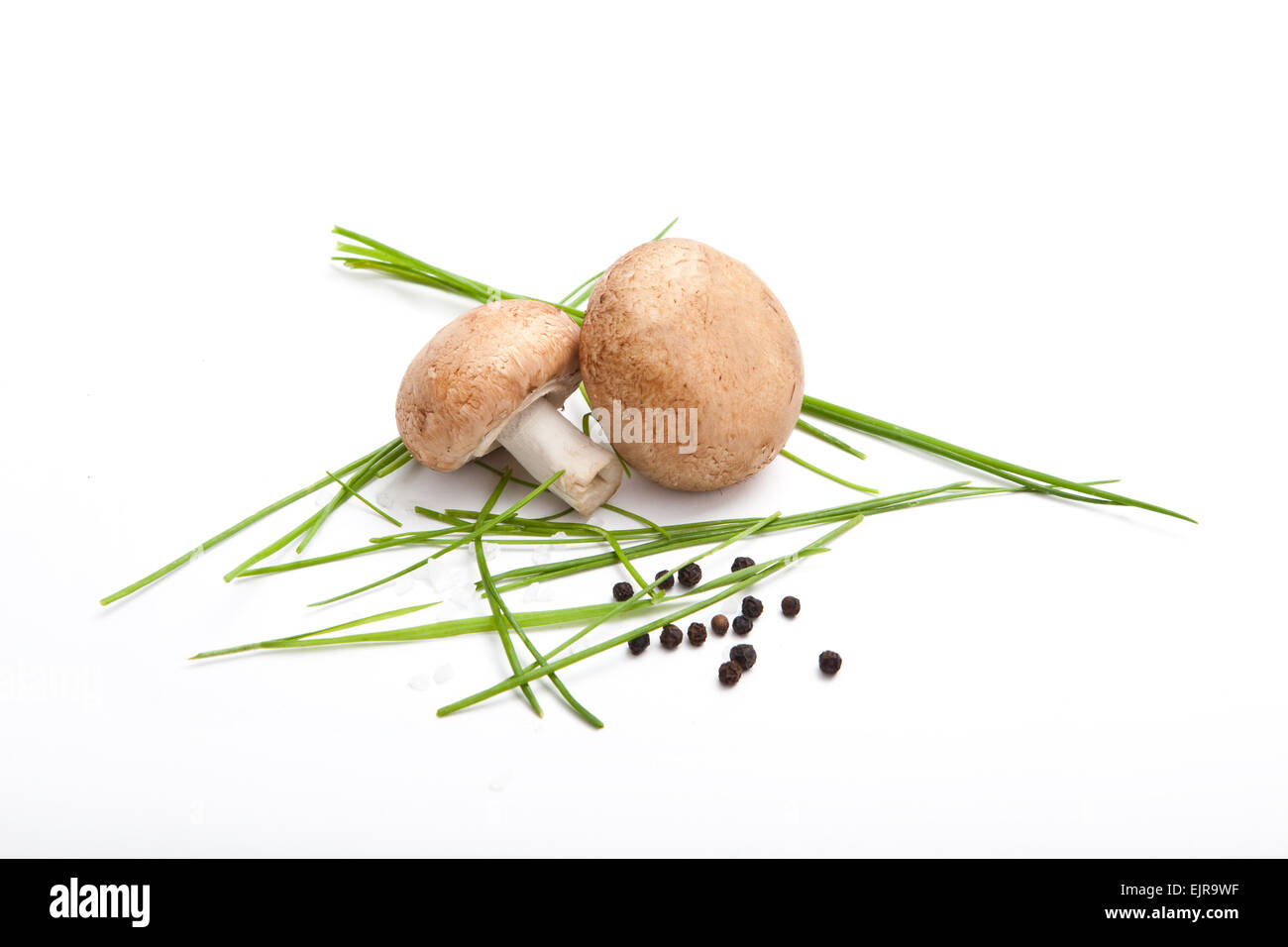 two champignon mushroom with fresh parsley, pepper and salt, white background, - Stock Image
