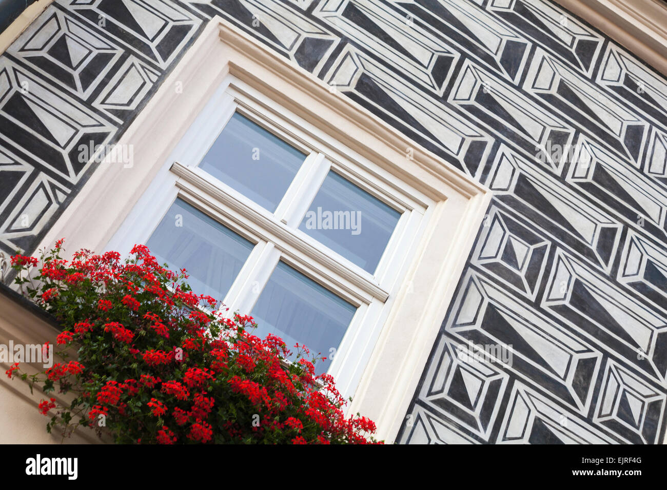 window box of red geraniums on house with sgraffito at Krakow, Poland in September - Stock Image