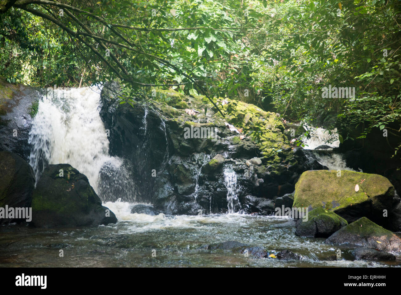 Raleigh waterfall, Central Suriname Nature Reserve, Suriname - Stock Image