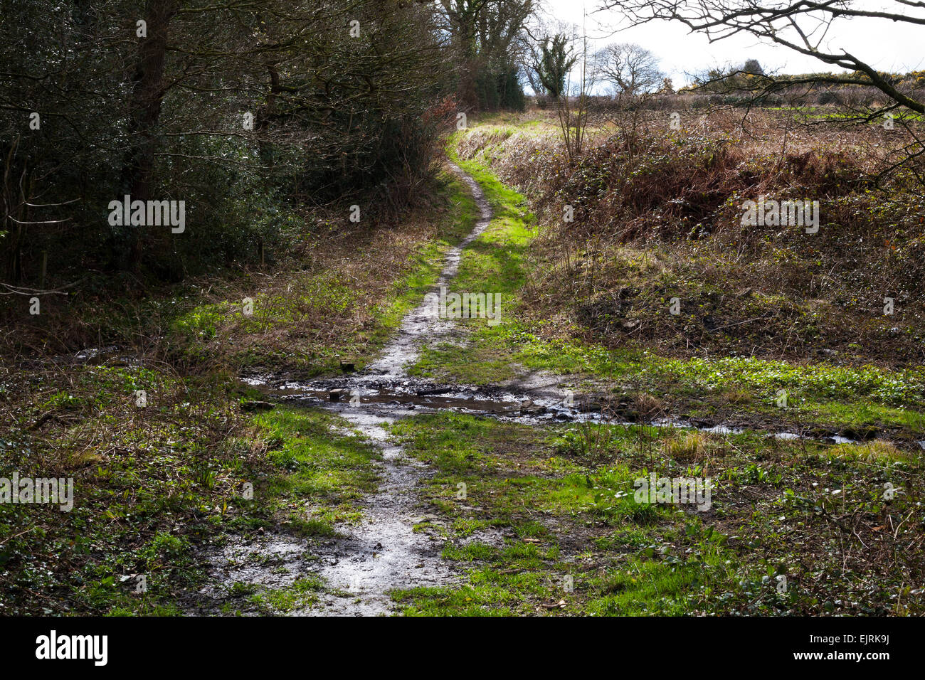 A public right of way running through the countryside in County Durham. - Stock Image