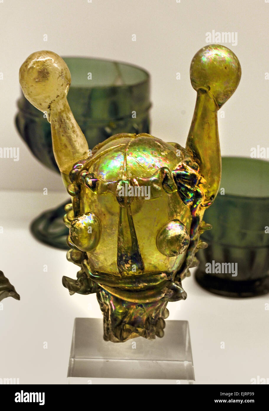 Narrenkopf ( Jester Fool Nar head ) 16 Century Mainz  glass German Germany - Stock Image