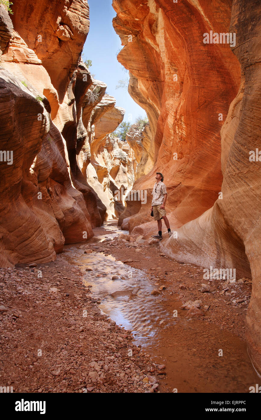 adult man standing in a slot canyon and looking upward - Stock Image