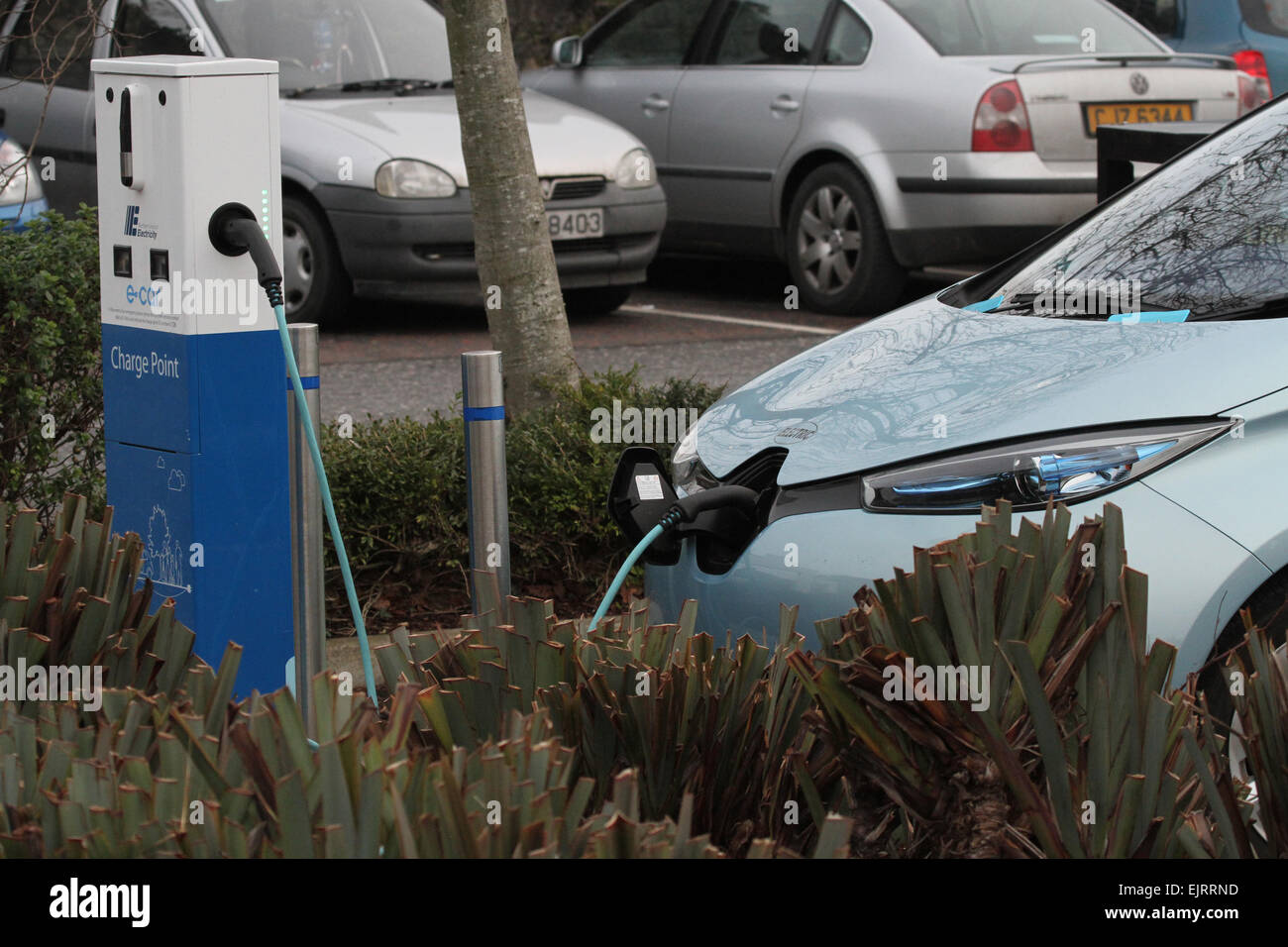 Electric car being charged at charge point - Stock Image