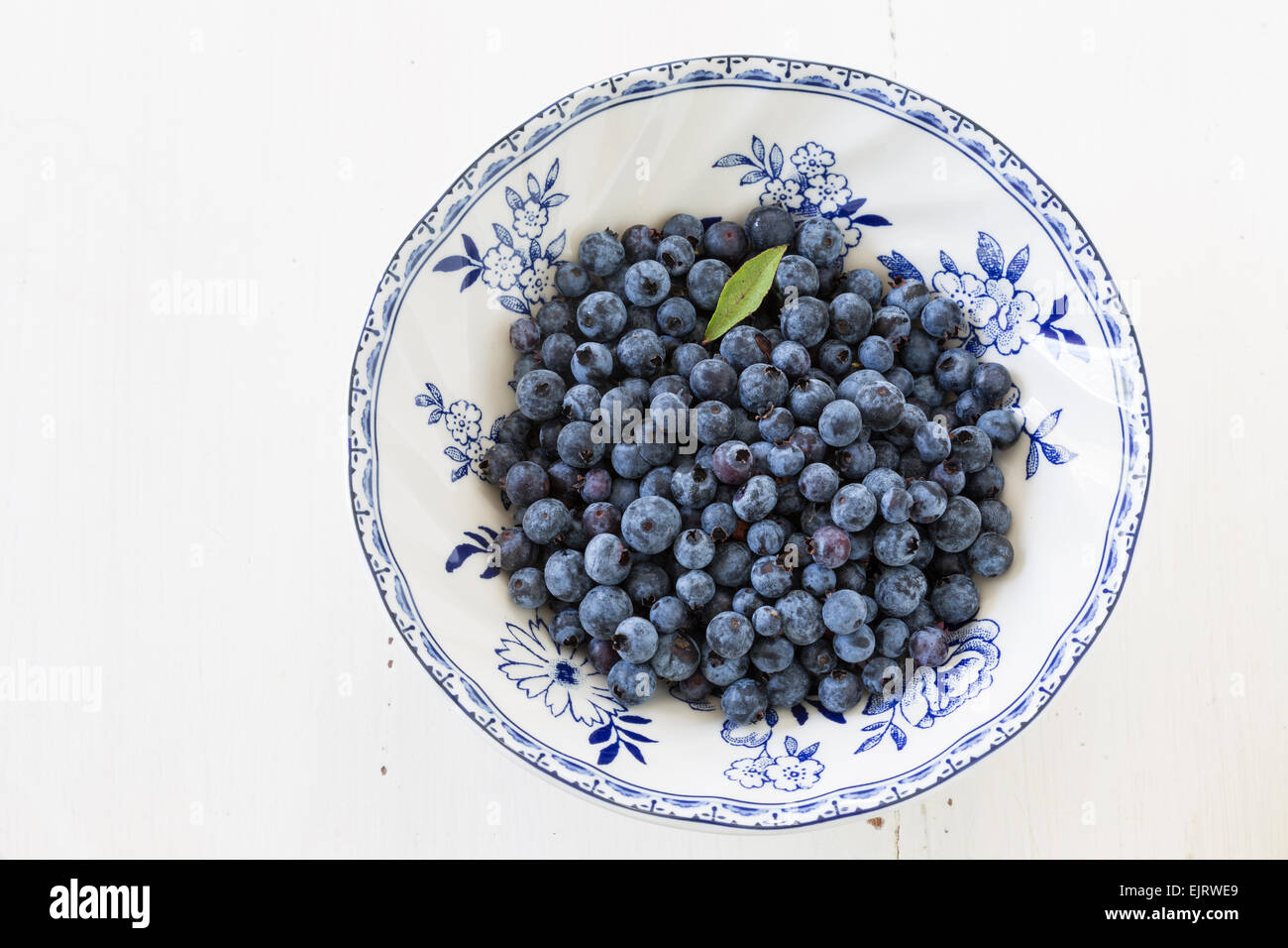 Wild blueberries in a china bowl. - Stock Image