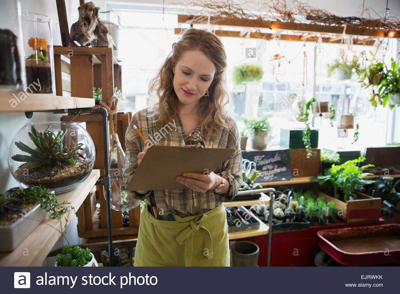 Terrarium shop owner taking inventory with clipboard - Stock Image