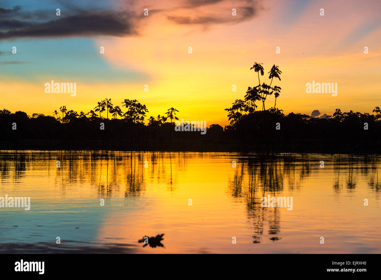 Colorful sunset deep in the Amazon Rainforest in Peru Stock Photo