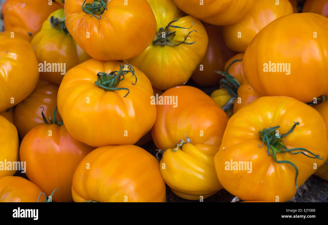 Yellow tomatoes in the market - Stock Image