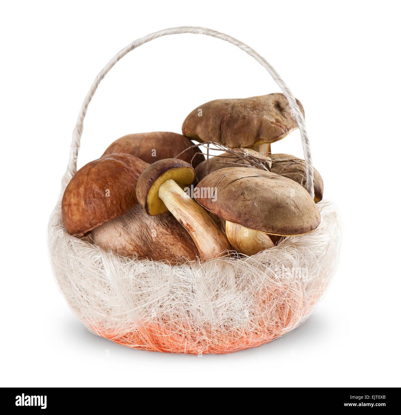 Boletus edulis and  White fungus in the basket  on white background - Stock Image