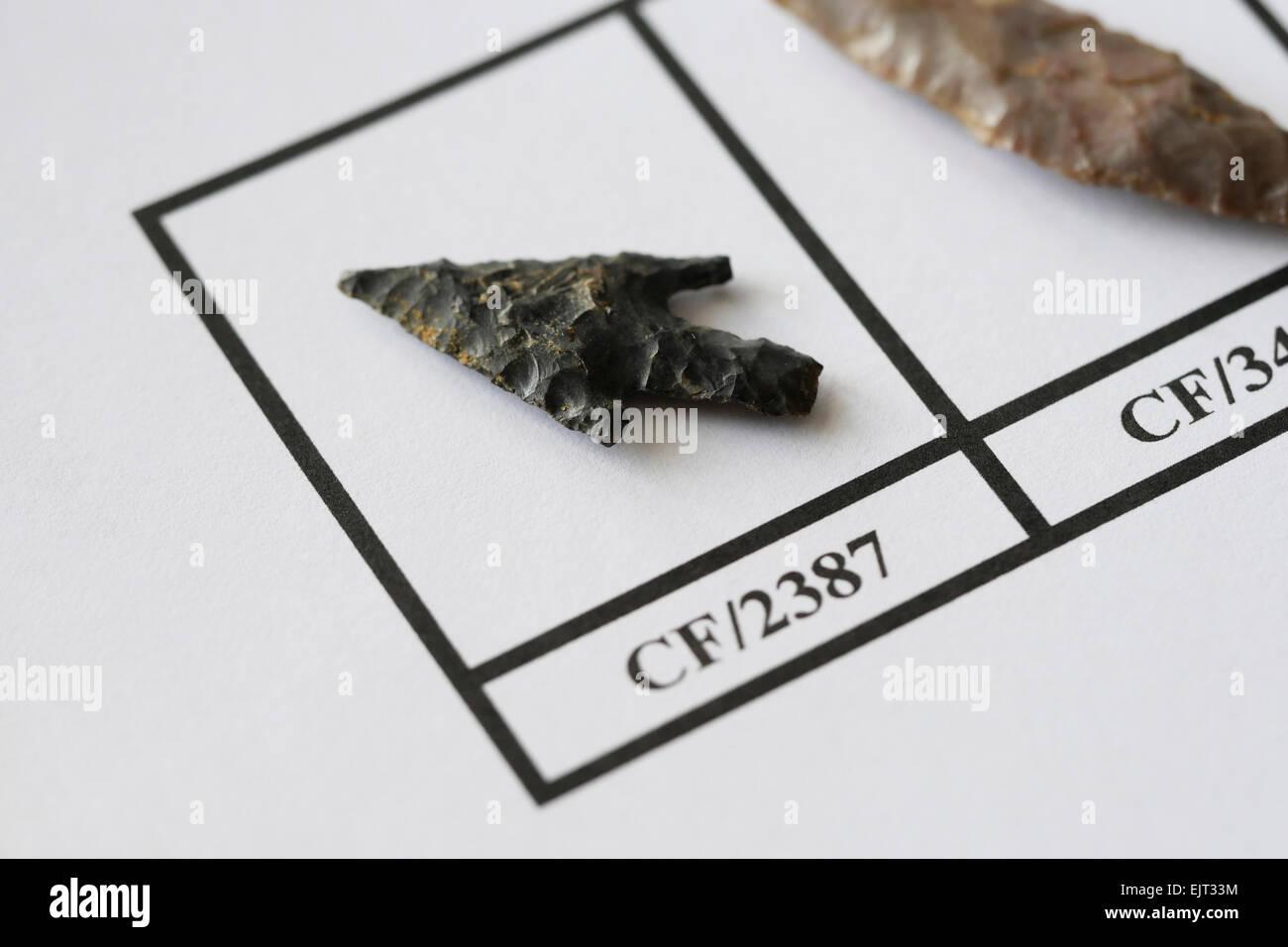 Neolithic flint arrowhead - Stock Image