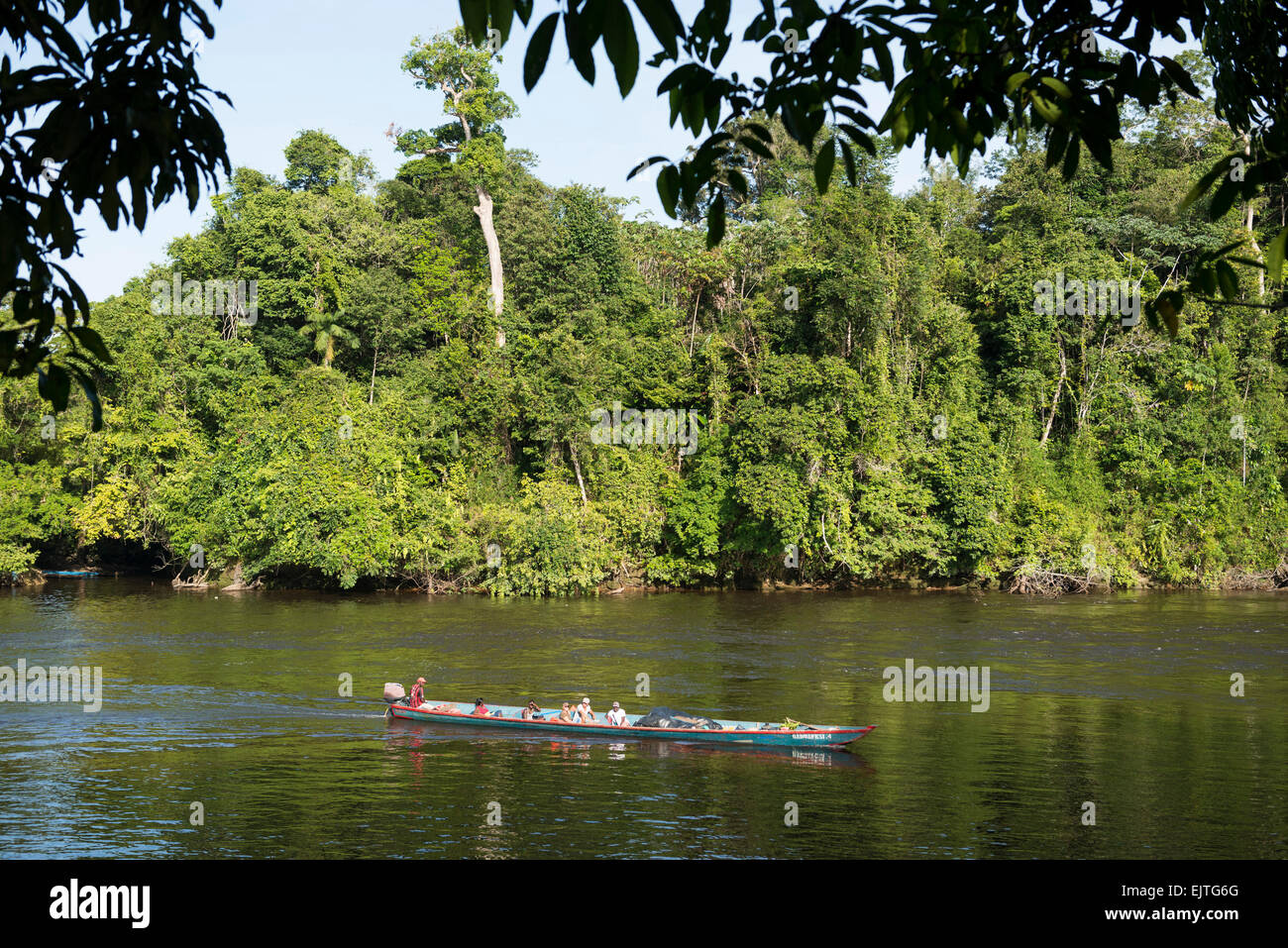 Boat on the Upper Suriname River, Suriname the Upper Suriname River, Suriname - Stock Image