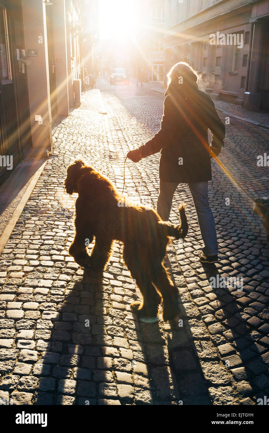 Rear view of woman walking with dog on cobbled street - Stock Image